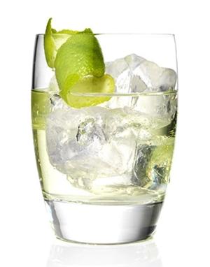 【哥顿黑刺李金酒Gordon#039;s Sloe Gin】价格